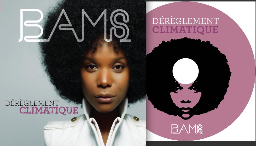 Bams-Dérèglement Climatique