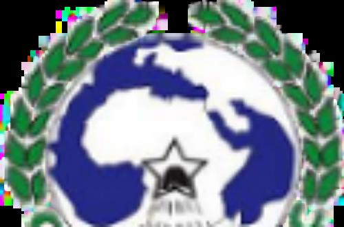 Article : Coupe CEMAC 2013 : Le Cameroun mordu par les Panthères du Gabon.