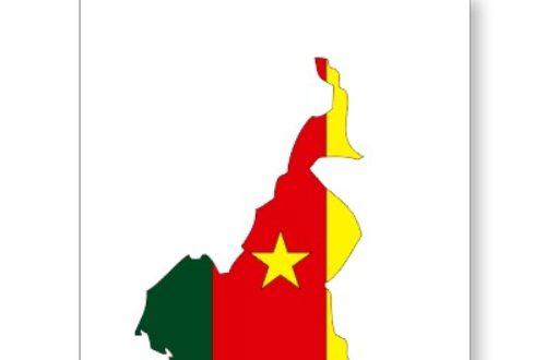 Article : Le Cameroun est émergent aujourd'hui