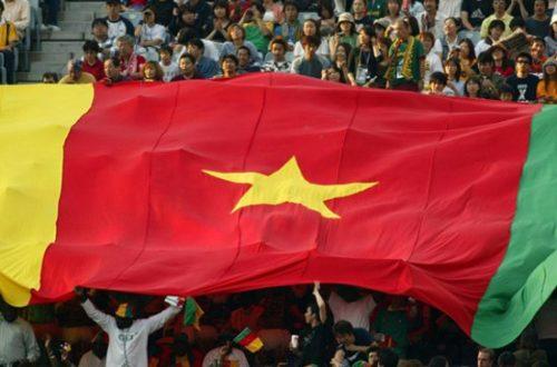 Article : Le Cameroun de 2019 ?