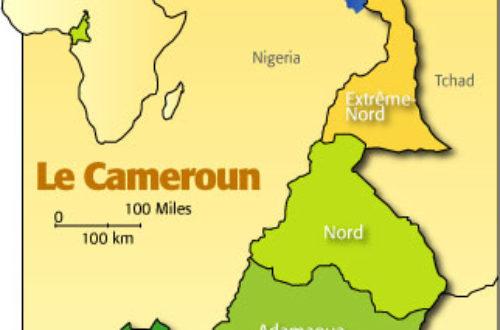 Article : Cameroun : la République du décret