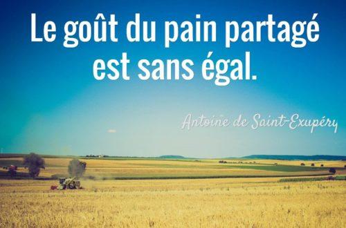 Article : 21 Mars 2016: Journée Mondiale du Pain.