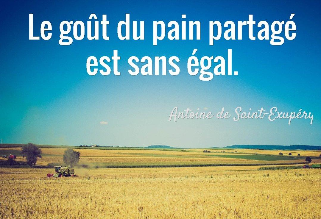 gout-pain-partage-sans-egal-antoine-de-saint-exupery