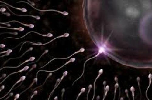 Article : Le jour où tu as souillé mon sperme