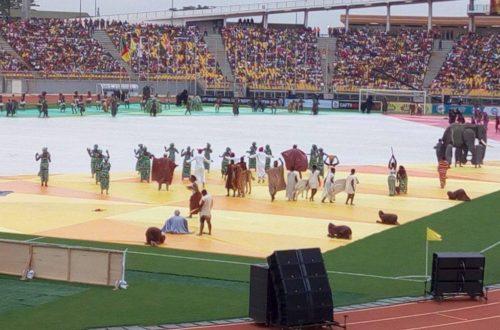 Article : Les colombes du Stade Omnisports de Yaoundé.