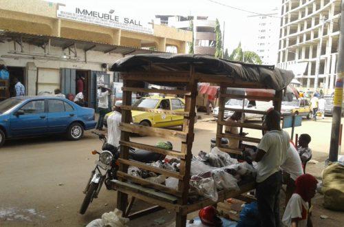 Article : Ma Guinée Plurielle, le marché du Niger (Chapitre 2)