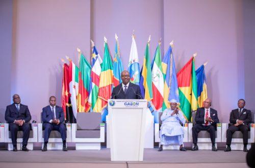 Article : Economie d'Afrique Centrale : résilience impérative !